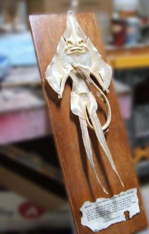 Jenny Haniver
