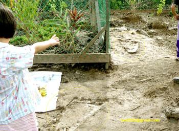 Borneo - 13 czerwca 2008 - ślady Bigfoota