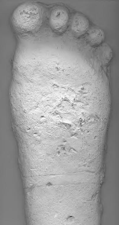 Yeti - odlew stopy wykonany przez Pattersona