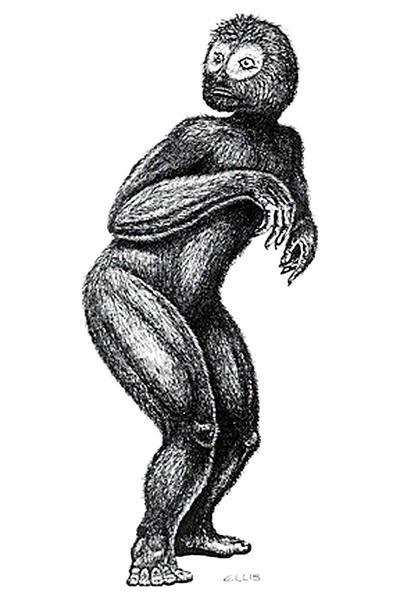 Małpa-skunks