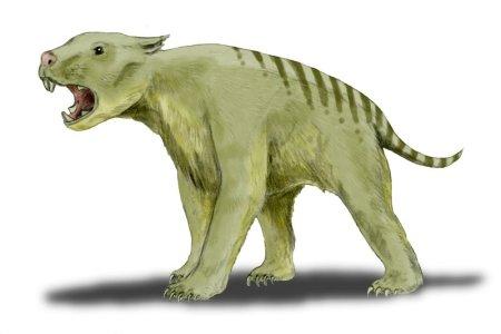 Lew workowaty Thylacoleo carnifex