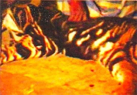 Skóra czarnego tygrysa