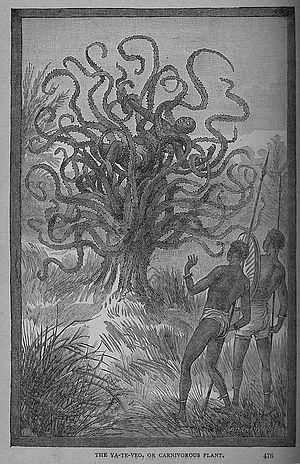 Drzewo-ludożerca