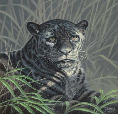 Hipotetyczny wygląd tygrysa pasiastego